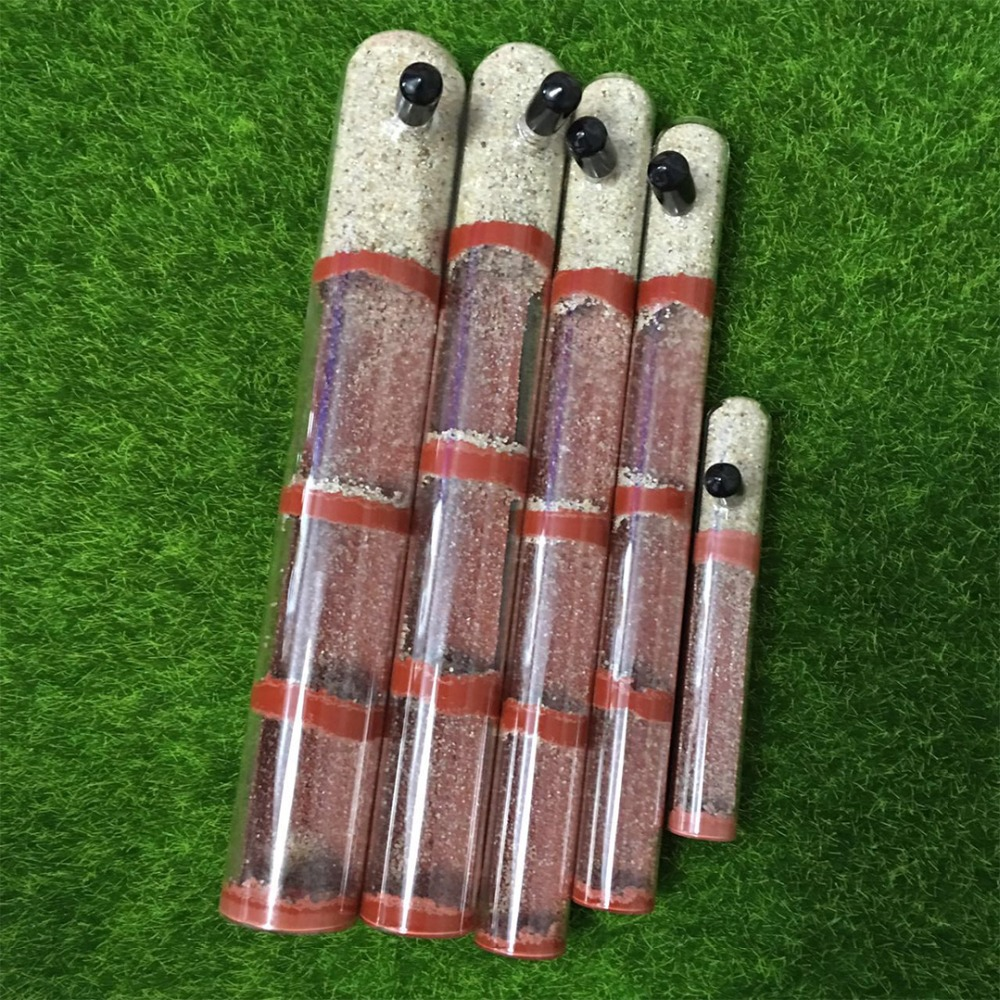 DIY Ecological Ant Farm Bamboo Test Tube Ant Nest Various Sizes Tubes Ant House For Pet Anthill Workshop Queen Ant Home