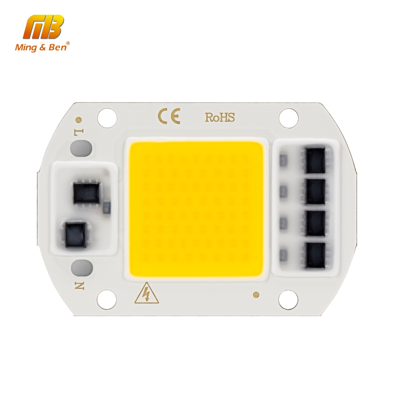 20W 30W 50W LED COB Chip AC 220V Smart IC DIY LED Beads For LED Projection Floodlight Spotlight Warm White Cold White Grow Light