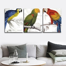 Parrot Animals Nordic Wall Pictures Poster Print Canvas Painting Calligraphy Decor for Living Room Bedroom Home Decor Frameless цена