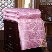 Luxury Chinese Silk Quilt Handwork Positioning Four Seasons Mulberry Silk Comforter Multi Size