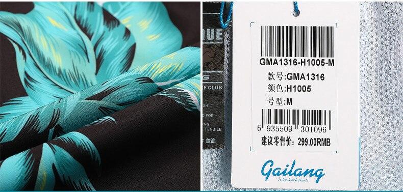 B5_GMA1316