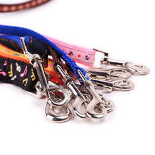Colorful Pet Harness with Leash