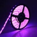 IP65 Водонепроницаемый 3528 светодиодные ленты розовый цвет СВЕТОДИОДНЫЕ ленты 60led/M 5 М 300 светодиодов led наружного света для фестивалей романтический светодиод лента