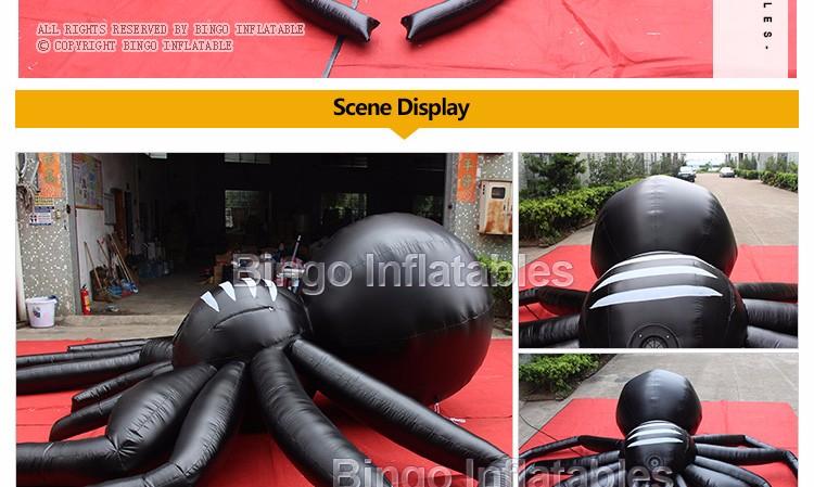 5M-black-spider--BG-A0803-2-2016_03