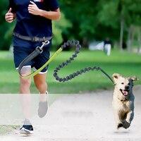 2017 Retractable Dog Leash Multifunction Elastic Nylon Dogs Leash Rope With Night Reflection Leash Strip Zipper