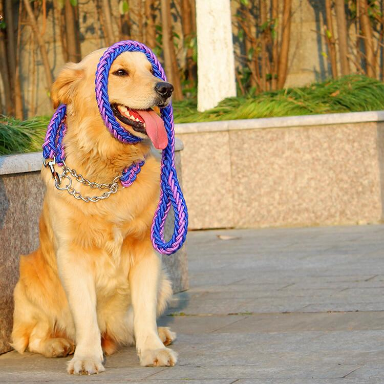 laisse pour chien corde