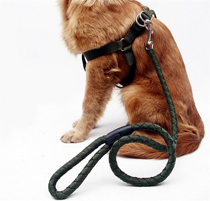 Collares para perros grandes for Collares para perros