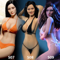 Phicen PLLB2014 S07/S09 1/6 figure Super Flexible Female Seamless Body with Stainless Steel Skeleton in Suntan Soldier Body