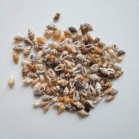 HappyKiss 0.9-1.5cm 100pcs/lot Natural conch shells mini conch corn screw wall decoration DIY aquarium landscape seashells