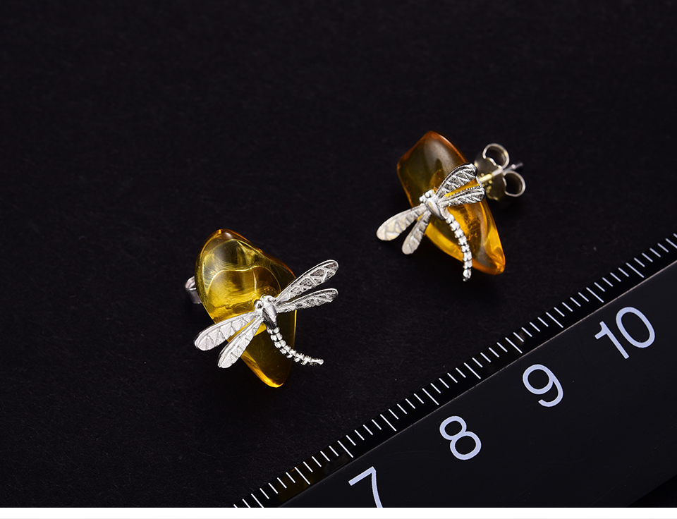 Cute-Dragonfly-LFJA0052_08