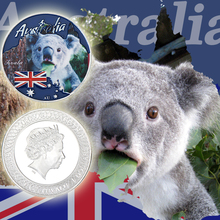 WR 8pcs Australia Animal Set Challenge Coin Commemorative Silver Plated Metal Wildlife Cute Animals for gift