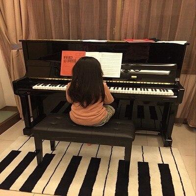 Mode noir et blanc Piano clavier épais tapis salon Table basse canapé chambre chevet fait main acrylique tapis