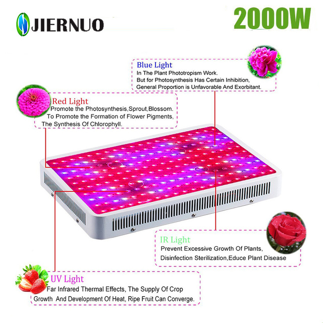 LED Grow Light 1200W 2000W Double Chips Fitolampa Led Grow Light Full Spectrum  Aquarium  Plant Grow Led for Indoor Plants BJ