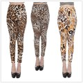 2016 fashion women summer Leopard print casual leggings fitness legging Candy Colore Dancing Pants Resilient cheap clothes china