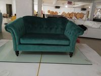 Newest Home Furniture European Style Modern Fabric Living Room Sofa Sectional Velvet Cloth Sofa Two Seater