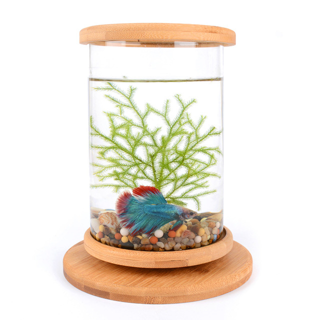 1pcs Glass Betta Fish Tank with  Bamboo Base  3