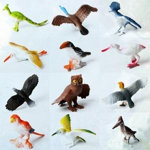 Image 1 - 12 adet Simüle Plastik Kuş Hayvanları Modelleri oyuncak seti Yapay Çok renkli Kuş Figürleri Çocuklar Eğitici Oyuncaklar Toddlers için