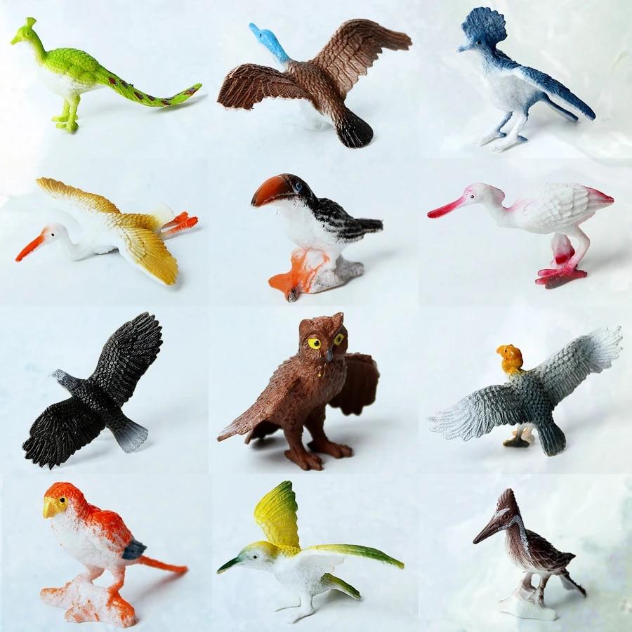 Educational Toy Cake Toppers Beauy Girl 12pcs Realistic Birds Figurines Plastic Bird Model Bird Figures Toy Animals Figures Set