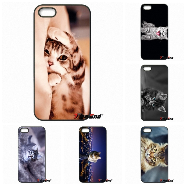 Pretty Furry Cat Wallpaper Cool Protective Case For Iphone X 4 4s 5