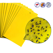 1pcs/lot Yellow Pest Control Strong Flies Traps Bedbugs Sticky Board Catching Aphid Insects Killer White Fly Thrip Fruit Mover