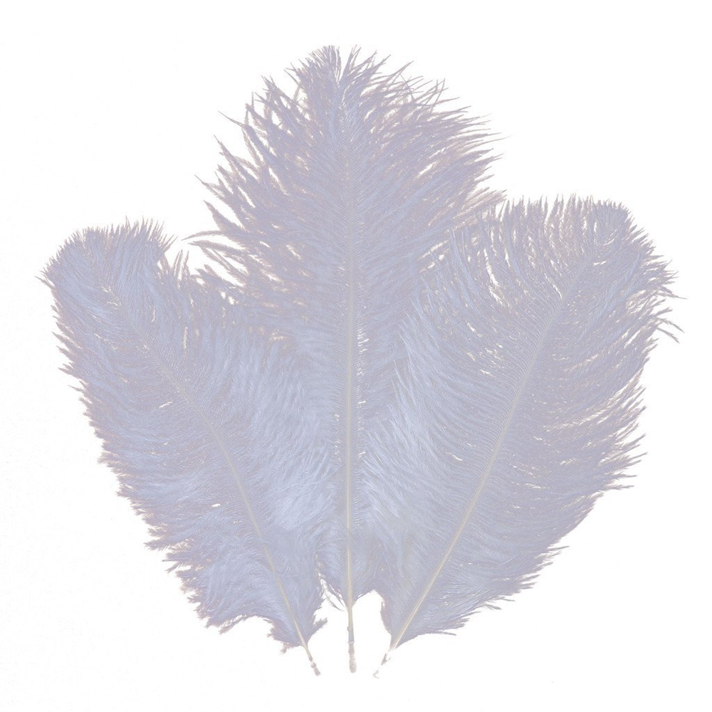 Wholesale Hard rod 50pcslot pure white Ostrich Feathers 15-20cm 6-8 Wedding Birthday Christmas Decorations