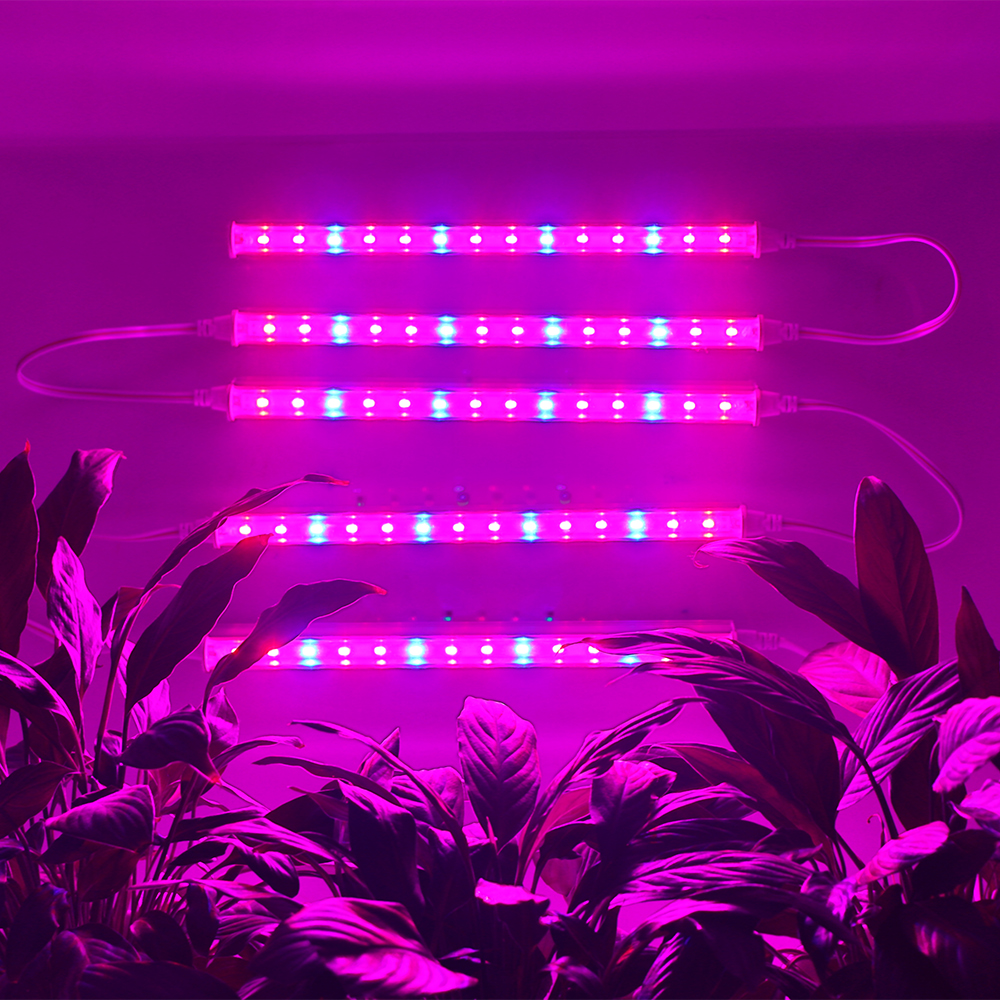 BORUiT Red Blue Grow Light Phyto Grow Led 25W Full Spectrum Plant Light Hydroponics Grow Light For Indoor Plants Flower