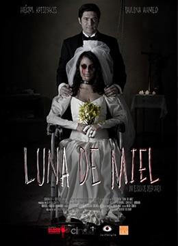 《蜜月旅行》2015年墨西哥惊悚,恐怖电影在线观看