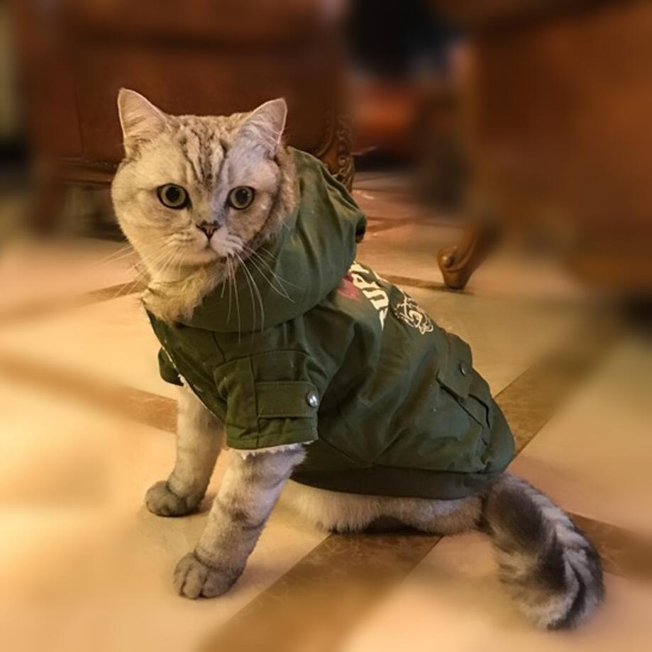 NEW Camo Warm Winter Cat Coat Jacket Fleece Inside Pet Clothes Dog Coat Hood Button Clsoure 2