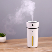 Hot Heart Cup Humidifier Warm Night Light Home Car Air Purifier 300ML High Capacity Living Room