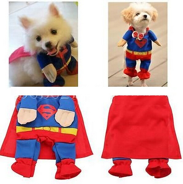 FD1870 Cute Pet Cat Dog Puppy Cotton Clothes Costume Superman Suit size ~Small~