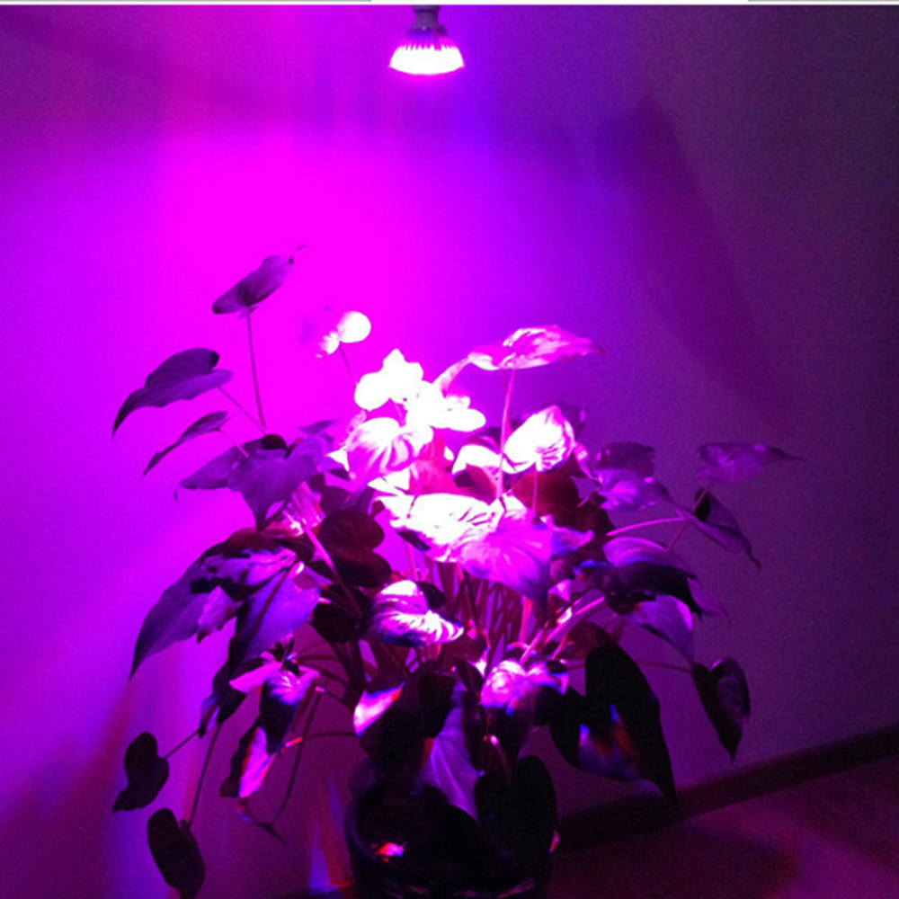 Svjetla za uzgoj biljaka 10W Osvjetljenje s novim 4Red + 1Blue E27 - Profesionalna rasvjeta - Foto 6