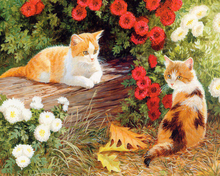 """DIY Painting By Number – Cat (16""""x20"""" / 40x50cm)"""