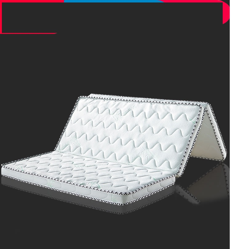 Foldable 100% Natural coir silk 10cm mattress Tatami soft palm Washable Customized Comfortable high-end single size