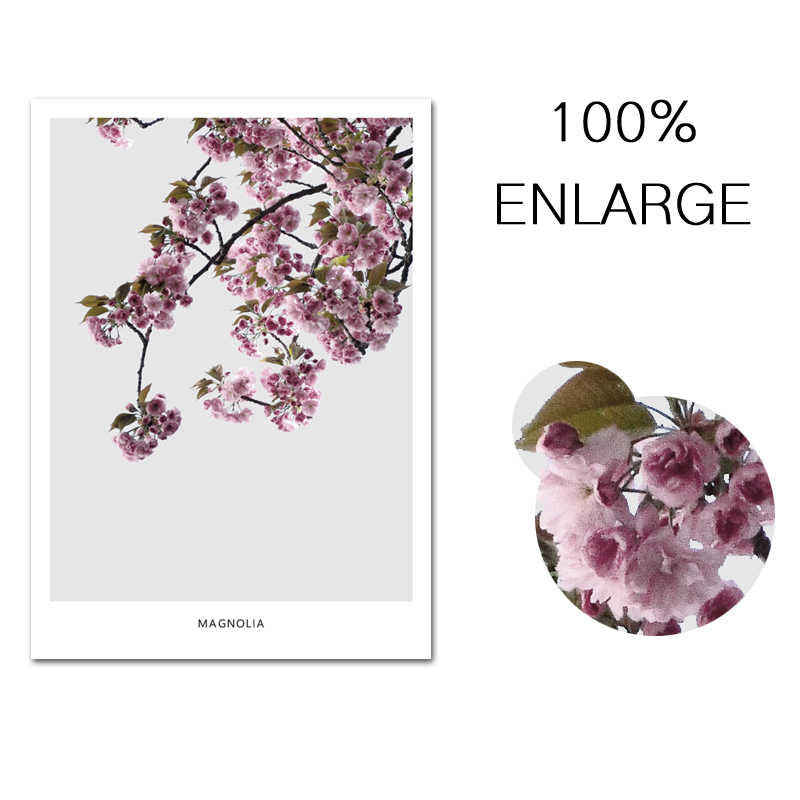 Nordic Minimalist Quotes Canvas Art Print Painting Poster Magnolia Flower Wall Pictures For Home Decoration Wall Decor