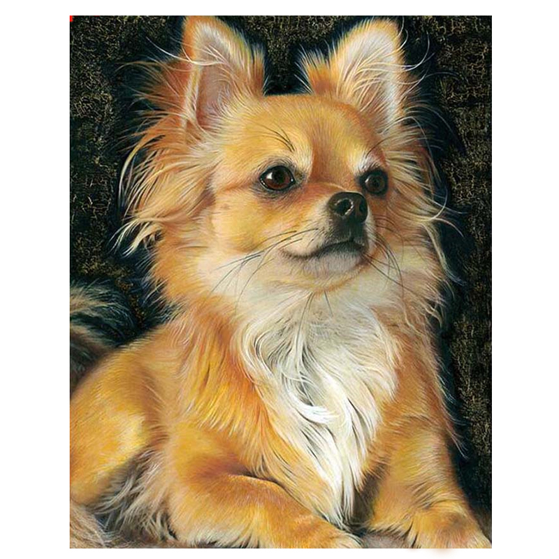 Full Drill Square 5D Diy Diamond Painting Chihuahua Dog Diamond Embroidery Cross Stitch Rhinestones Paintings By Number ZP-1632