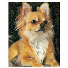 Full Drill Square 5D Diy Diamond Painting Chihuahua dog Embroidery Cross Stitch rhinestones paintings by number ZP-1632