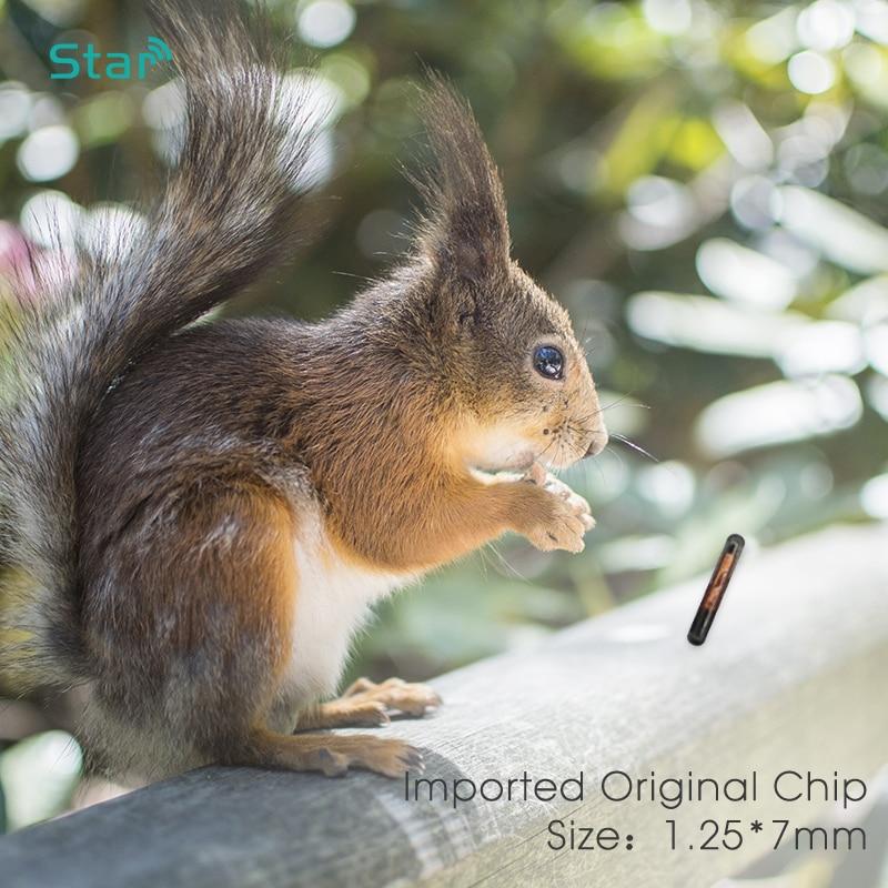 10pcs Small Size 1.25*7mm RFID Microchip Transponder Syringe Veterinary Animal Id Tag