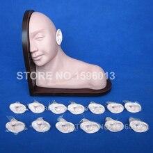 Avançado Modelo de Formação Exame Do Ouvido Humano, 14 pcs Orelha Simulador de Inspeção