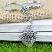 ФОТО tkuamigo inspired anatomical heart key chain science biology keyring  anti silver color memorial gift jewellery wholesale a207