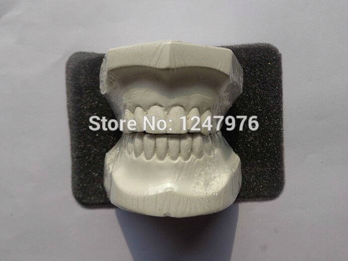 где купить Dental gypsum plaster casts of teeth, dental wax model по лучшей цене