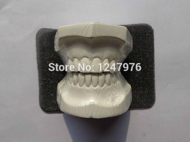 Gesso lança de dentes dental, Dental modelo de cera