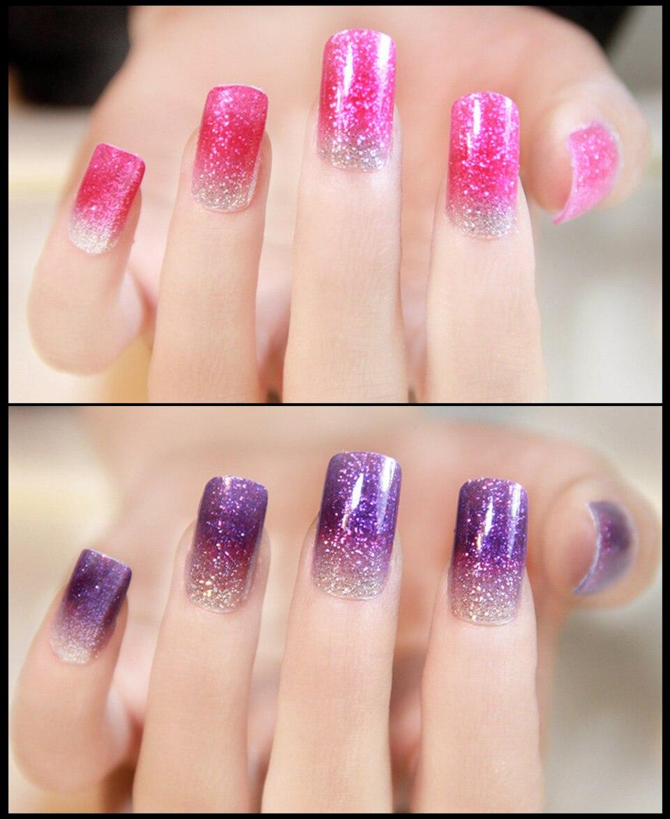 1g/Box Holographic Nail Glitter Powder Shining Nail Glitter Pigment ...