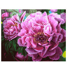 Acrylic Paint Colors,Flower Painting For Living Room Decoration,Diy Oil By Numbers