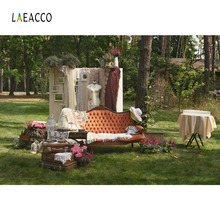 Laeacco Spring Outdoor Grassland Chic Furniture Scenic Photography Backgrounds Custom Photographic Backdrops For Photo Studio