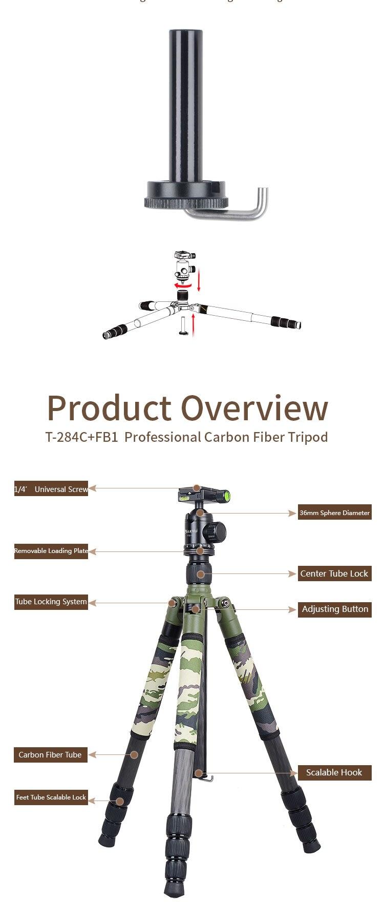 T-284C+FB1__02