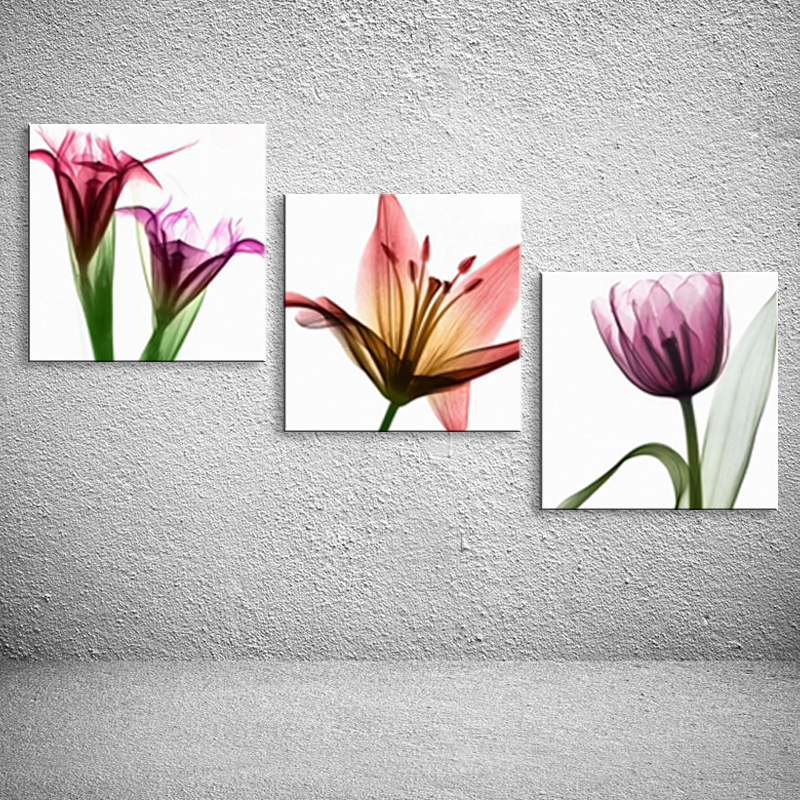 Framed painting wall art canvas framed Transparent flowers Home ...