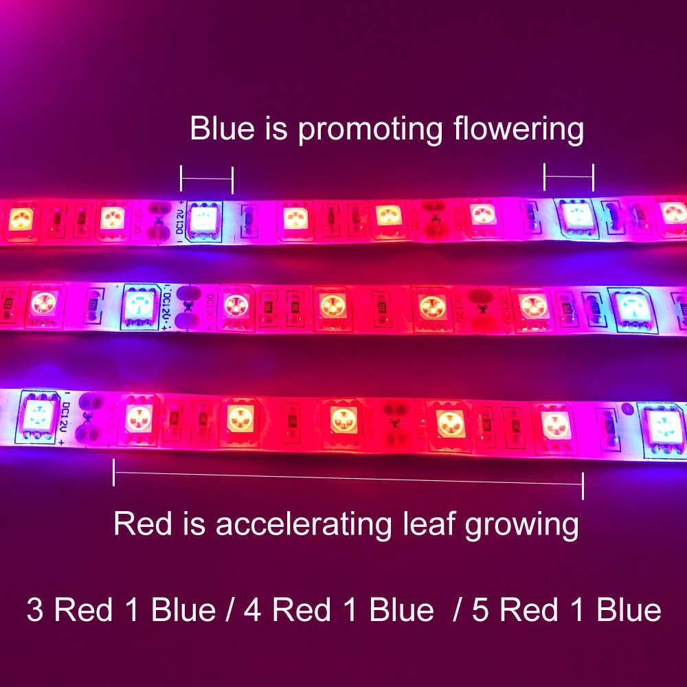 Pianta Coltiva le luci 5m Impermeabile Spettro Completo HA CONDOTTO La Striscia Fiore phyto lampada Rosso blu 4:1 per la Serra Idroponica + adattatore di alimentazione