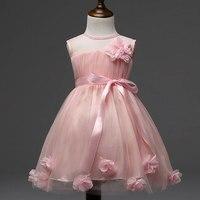 C0098 Al Por Mayor Nuevas Muchachas de La Manera Vestido de Niña de las Flores Princesa Vestido de Los Niños de Tela Transparente