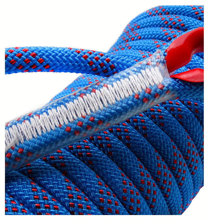 Climbing Rope, 10mm, Tree Wall Climbing, Survival Fire Escape Safety Rope Carabiner 23