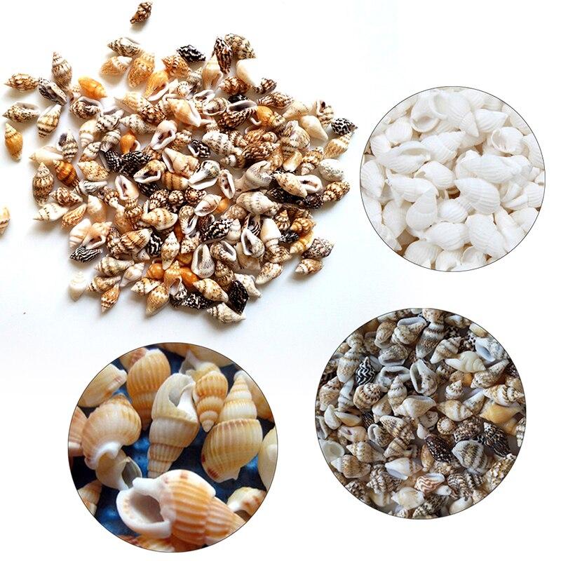 100pcs Natural Conch Shells Aquarium Decoration Home For DIY Crafts Or Party Decor Natural Sea Beach Shell Conch Seashells Py